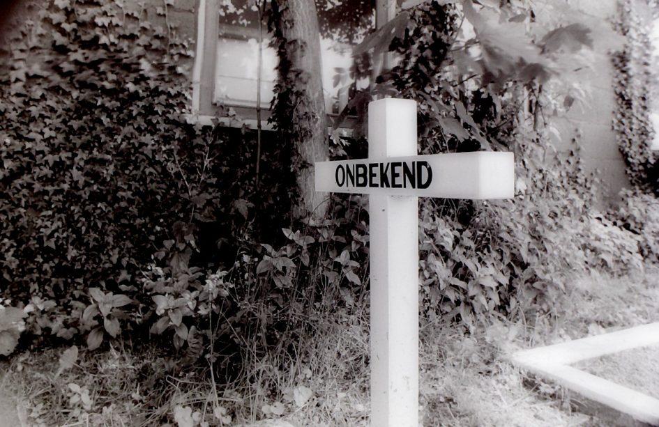 The long and winding road (5) : Terug van weggeweest: reïncarnatie